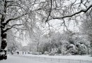 UK set to be hit by an Arctic blast of cold and snow from today