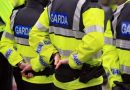 Gardai appeal for witnesses to a 32-yr-old man's murder yesterday in Tallaght