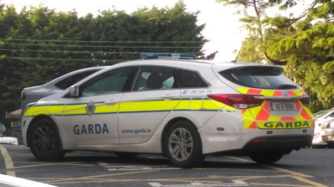 Gardai reveal they are currently questioning a teenage boy following the death of an Italian national at his Co Offaly home