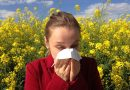 Hayfever and asthmatics urged to take extra precautions as pollen count reaches its highest peak