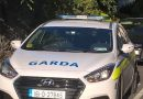 Gardai investigating after a number of shots were fired at a pub in west Dublin