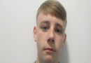 Gardai appeal for social media sharing of missing Dublin teenager Eric McLoughlin